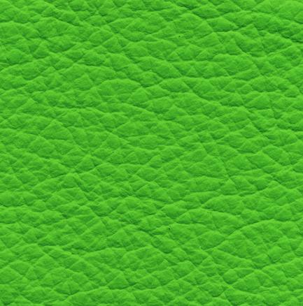 koža P08 zelený