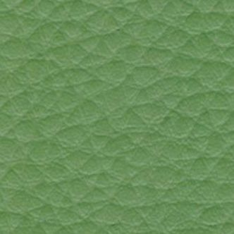 koženka DOLARO Z3 zelená